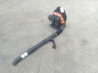 Echo PB500 Blower Photo