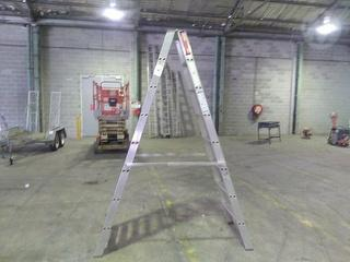 Ladamax DS082HA Ultra-max 150 Ladder Photo