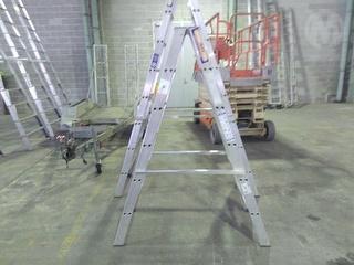 Ladamax DS062HA ULTRA0MAX 150 Ladder Photo