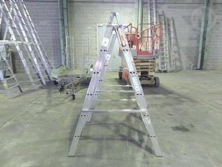Ladamax DS062HA Ultra-max 150 Ladder Photo