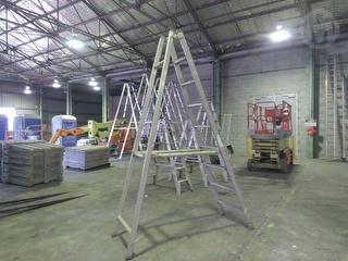 STEPLADDER3-0 M Ladder Photo